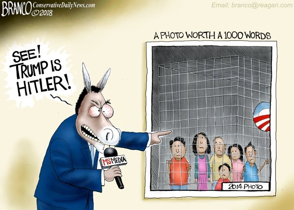 Image result for branco cartoons cages for children