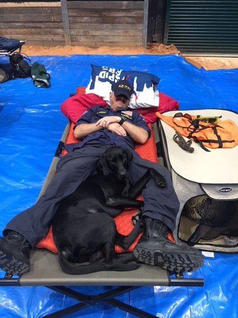 We look for any excuse to highlight our search & rescue canines & #TakeYourDogToWorkDay is no exception. Meet Oso, a two-year-old black lab whos known as a goof off-duty and a search monster on. He works side-by-side with his handler, Armando, on Arizona Task Force 1.