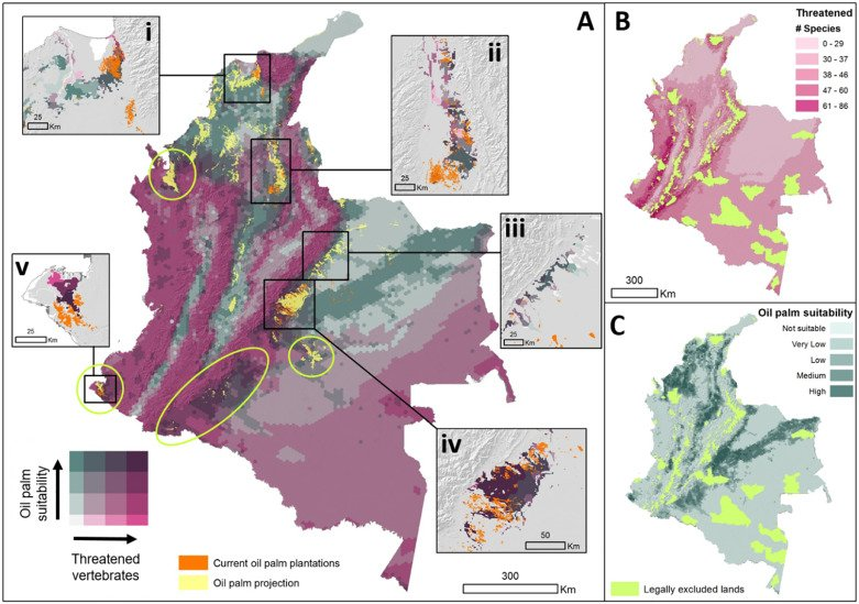 Quantifying impacts of oil palm expansion on Colombias threatened biodiversity sciencedirect.com/science/articl…