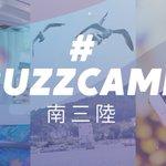#Buzzcamp南三陸 Twitter Photo