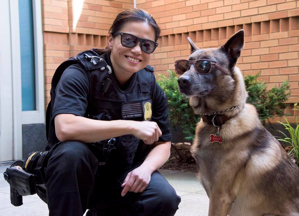 For Secret Service K-9 handlers, every day is #TakeYourDogToWorkDay. How they manage their protective mission while maintaining that level of suave we will never know.