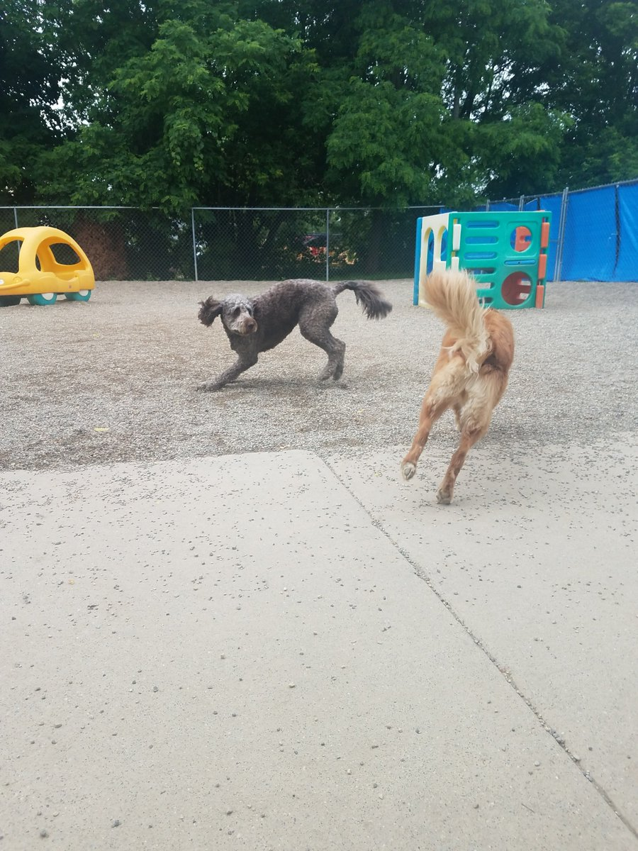 Maggie Mae races past Tucker!