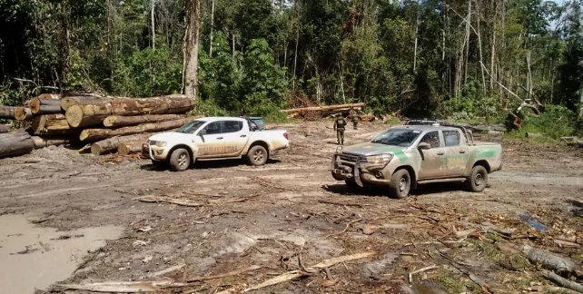 Ibama apreende madeira extraída ilegalmente em terra indígena no Pará https://t.co/2icw9bwJpk #G1