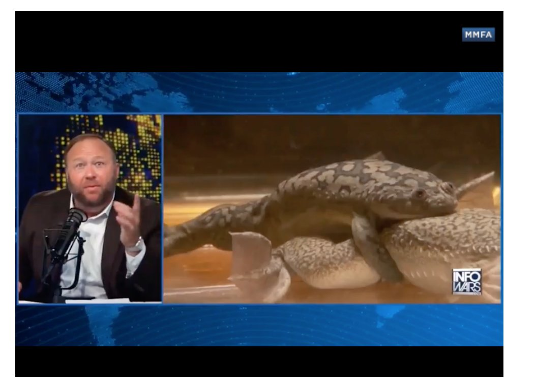 I love how with Alex Jones, it always goes back to the gay frogs
