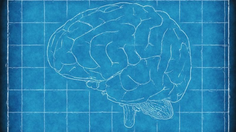 Massive genetic study finds many links between various psychiatric illnesses https://t.co/j71lWw0rpy
