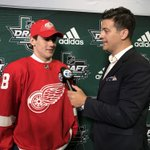 Red Wings Twitter Photo