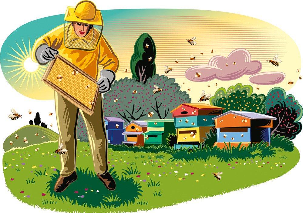 работа пчеловода рисунок такого типа представляют