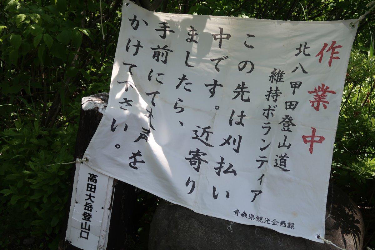 yuwarashi photo