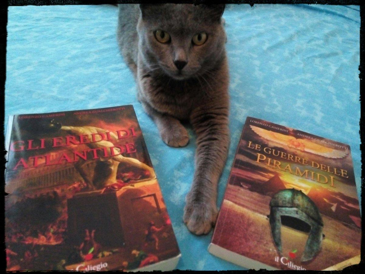 """Growl! La pantera grigia ordina: leggete!"" ;-)#CatsOfTwitter#cats#books #libri #fantasy #leggere  - Ukustom"
