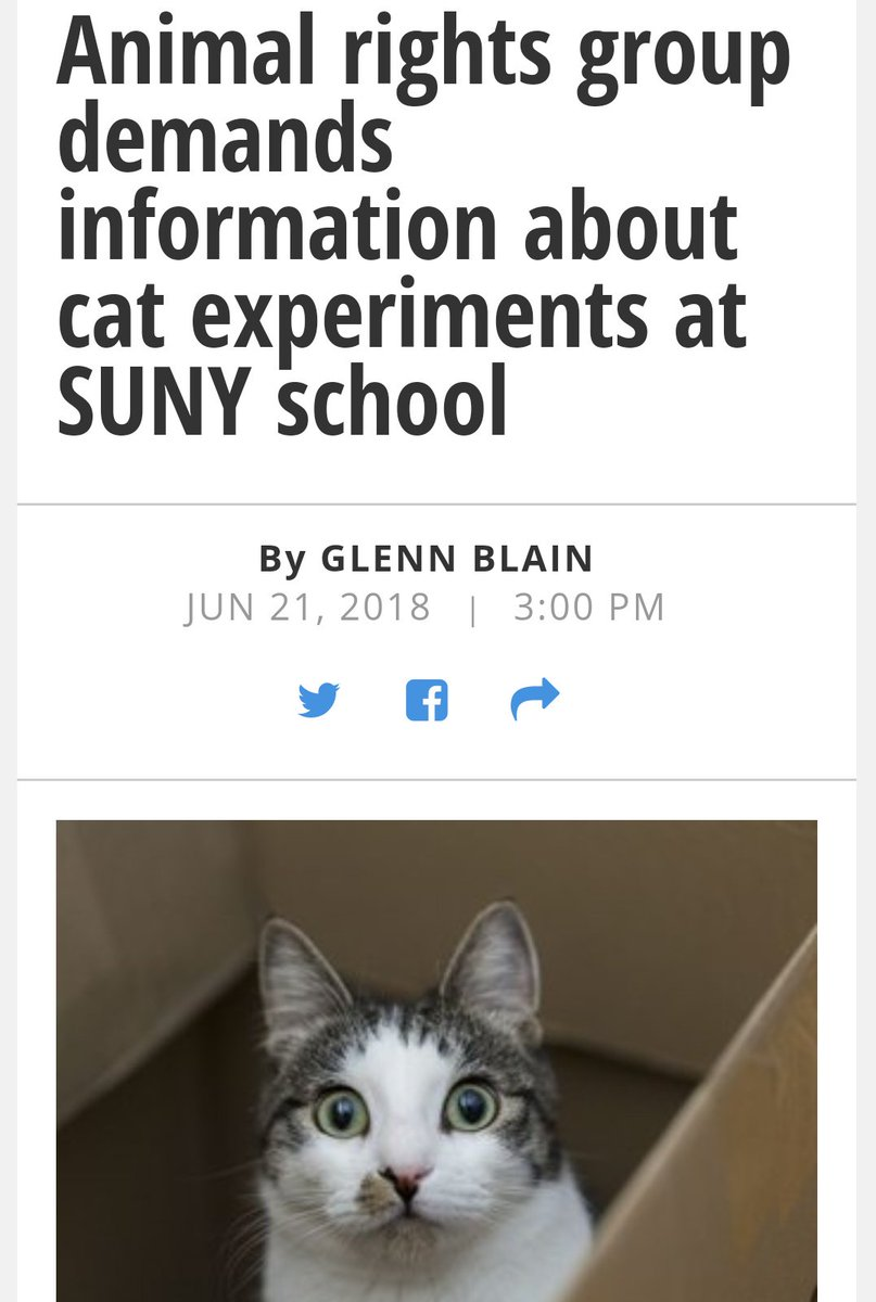 Animal rights group demands information about painful horrendous  experiments on #cats #Kittens #AnimalCruelty #AnimalAbuse at #SUNY State University of #NewYork  @NYDailyNews @NYGovCuomo @ALDF @KeithOlbermann @ABC7NY @ASPCA  http://www. nydailynews.com/news/politics/ ny-pol-suny-cat-experiments-20180621-story.html &nbsp; … <br>http://pic.twitter.com/3RSkJMajaN