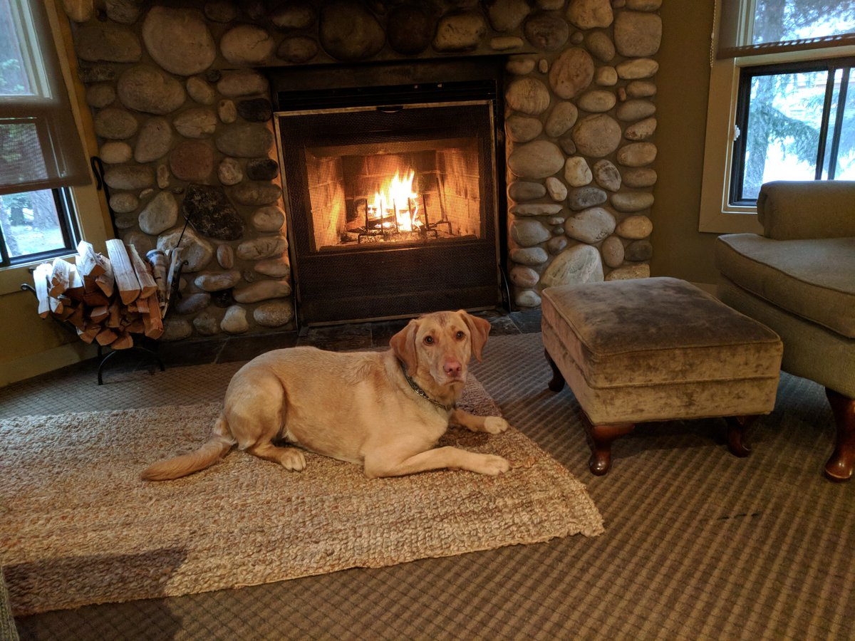 Raining in Banff. Great day to hang out with Miko by the fireplace . @MikeQuindazzi @ByronBergren @jenn_cordeiro @guedjdelphine @amy_brohman @MichelleRempel @gdebuen @kinsellawarren @DianeKazarian @andy_woodfield @robmccargow<br>http://pic.twitter.com/oLYDgTEwnR &ndash; à Buffalo Mountain Lodge