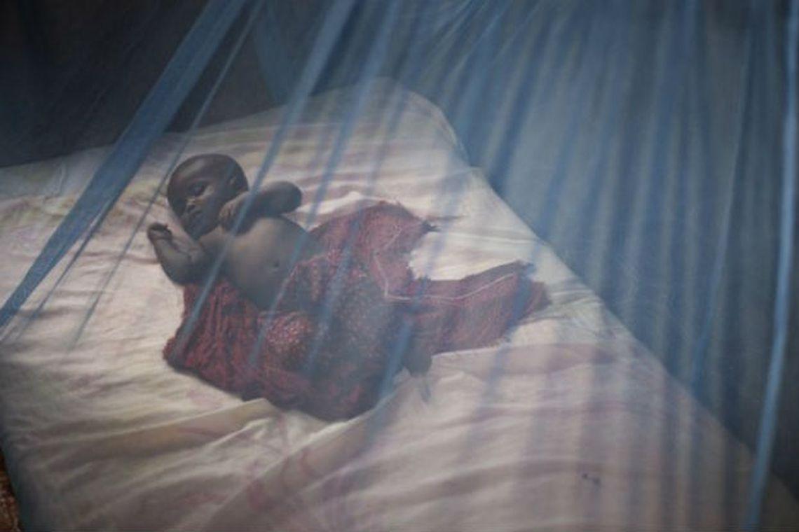 Fundação Gates investe na eliminação da malária no Brasil. https://t.co/FiN4fKJHkp 📷 Acnur/Sarah Hoibak©