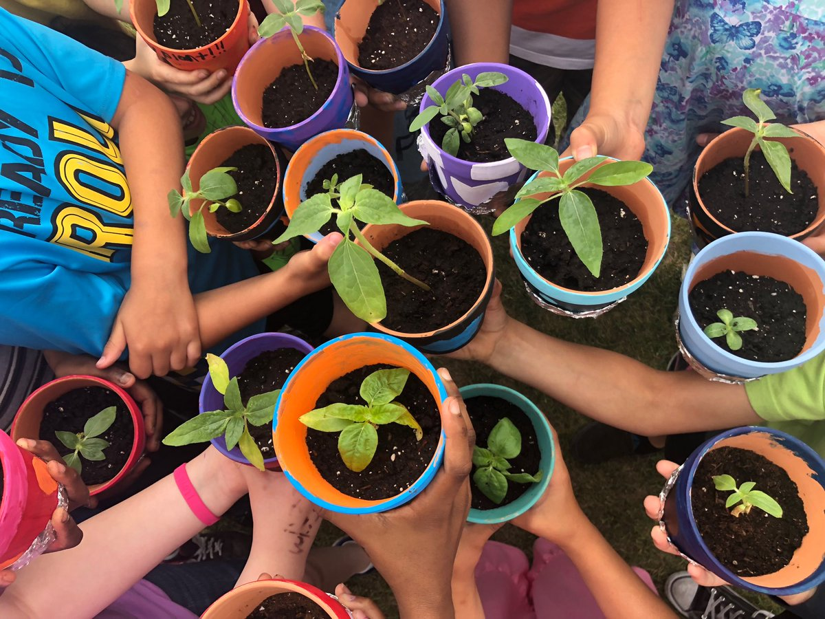 We grow many things at Anne Fitzgerald: plants, love, mindfulness, respect, togetherness plus so much more! #ecsd #ecsdfaithinspires <br>http://pic.twitter.com/bqGz7h2YF2