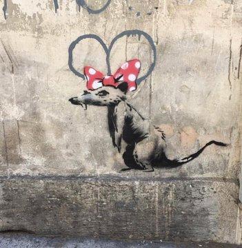 Посмотреть изображение в Твиттере В Париже появились новые граффити Бэнкси В Париже появились новые граффити Бэнкси DgZi8KfW4AI8aPF format jpg name 360x360