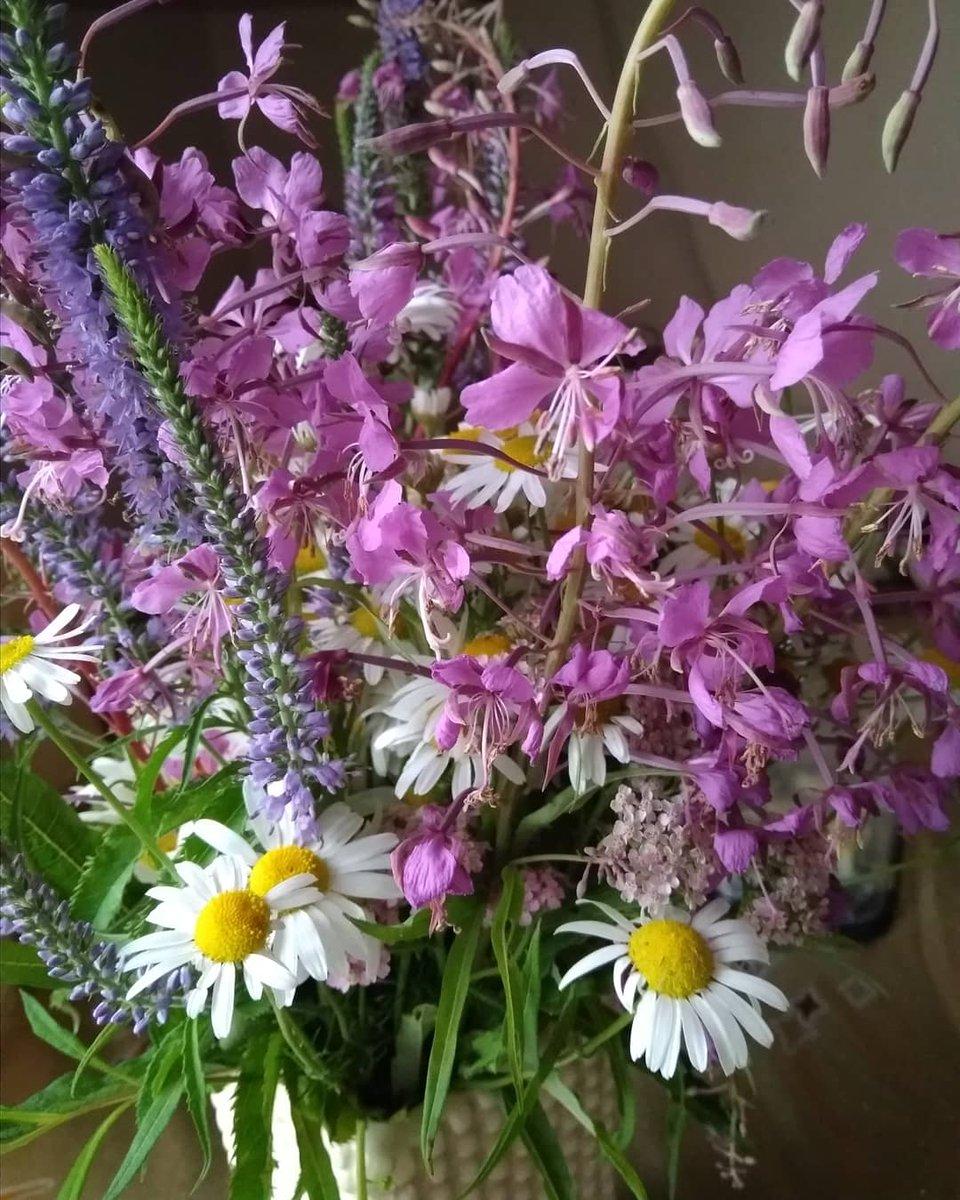 преддверии осени, гифка красивые цветы и домашние и полевые фото коллекция круговые