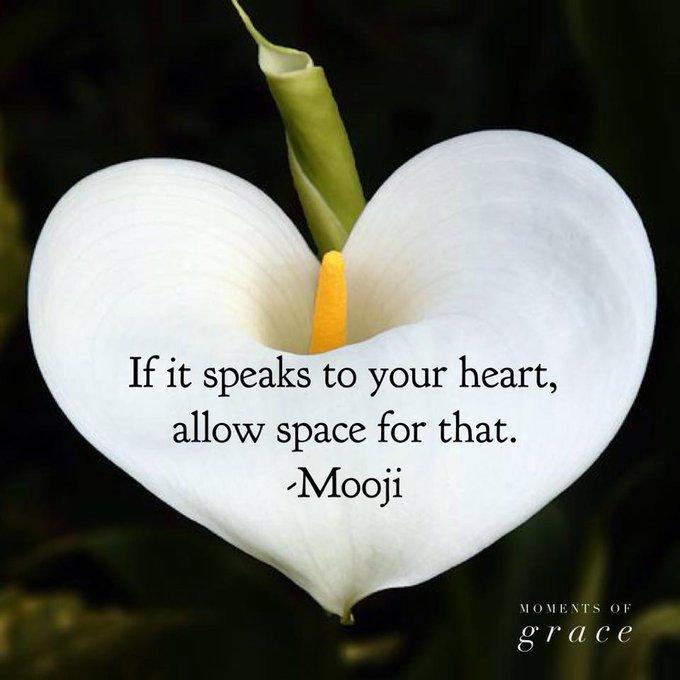 If it speaks to your #heart, allow space for it   via @Voieinterieure   #ThinkBIGSundayWithMarsha #InspireThemRetweetTuesday #Life #JoyTrain #IQRTG #Love #LightUpTheLOVE #LUTL  #SaturdayMotivation #MondayMotivation  #TuesdayThoughts  #WednesdayWisdom <br>http://pic.twitter.com/dNR72tJQiv