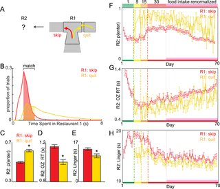 #mice learn to avoid regret dlvr.it/QYKX01 @PLOSBiology