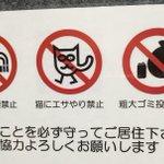 猫にエサやり禁止はわかるけど?これは本当に猫?!