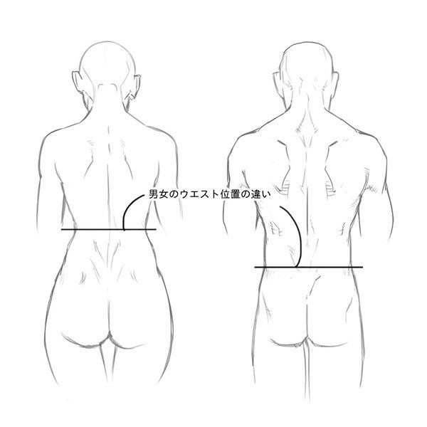 いちあっぷ On Twitter 男女の後ろ姿の違いはと 描き分けの