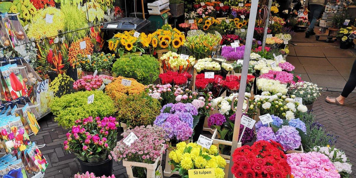 Оптовые рынки цветов в киеве, цветы майкопе доставкой
