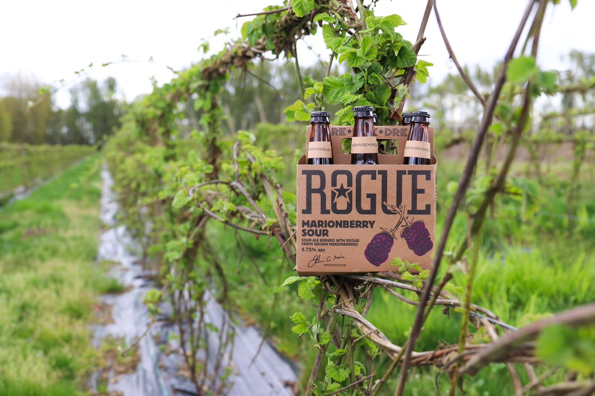 Rogue Ales & Spirits's photo on Drink