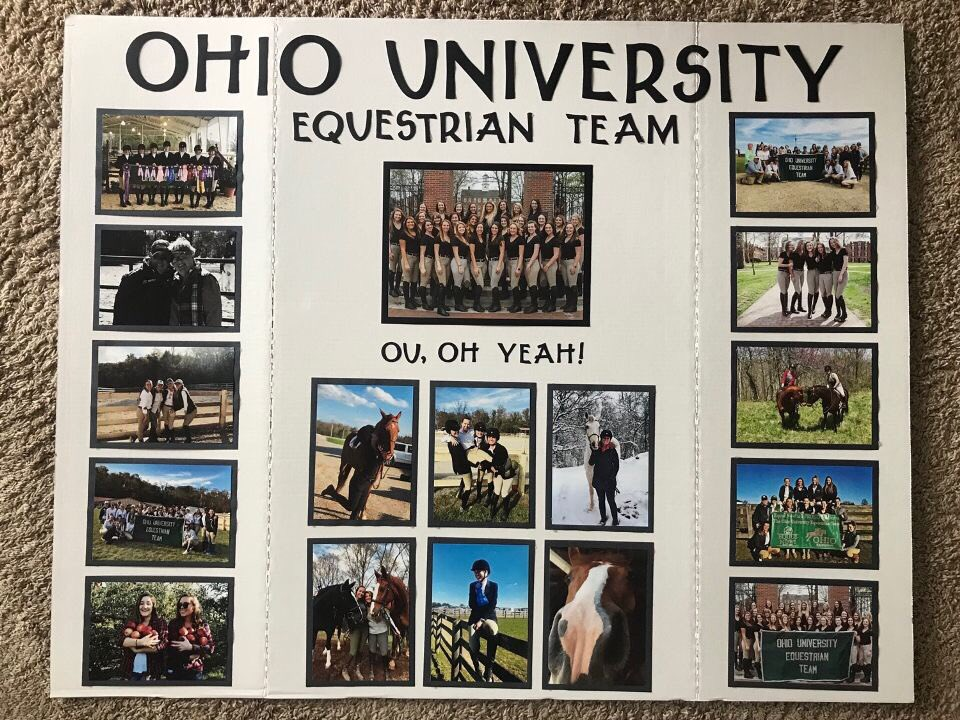OUET (@OUEquestrian) | Twitter