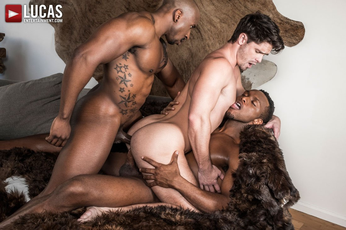 from Khalil gay bear sex ali