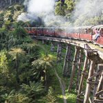 Puffing Billy Twitter Photo