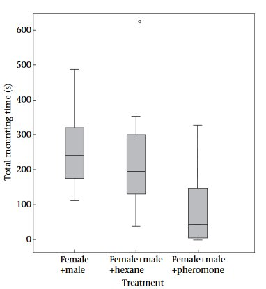 who likes sex more male or female