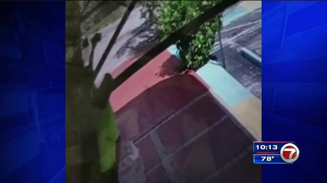 Police searching for man caught on surveillance video vandalizing Hollywood restaurant https://t.co/s70lAbe3X0