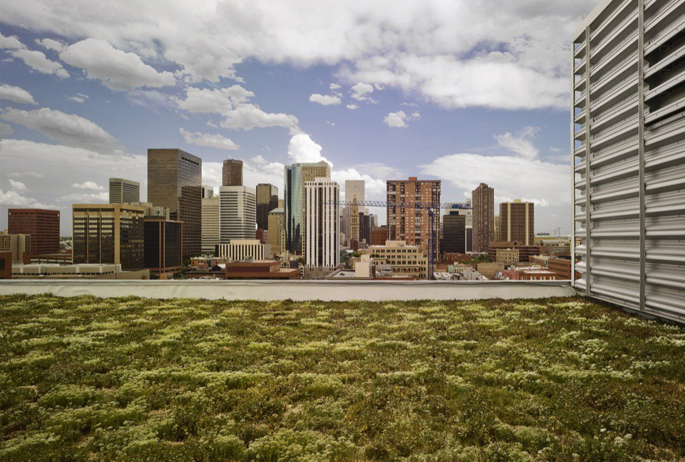 Denver City Council to Hear Proposed Changes to @DenverGreenRoof Initiative #greenroofs https://t.co/iaFU9svYzL