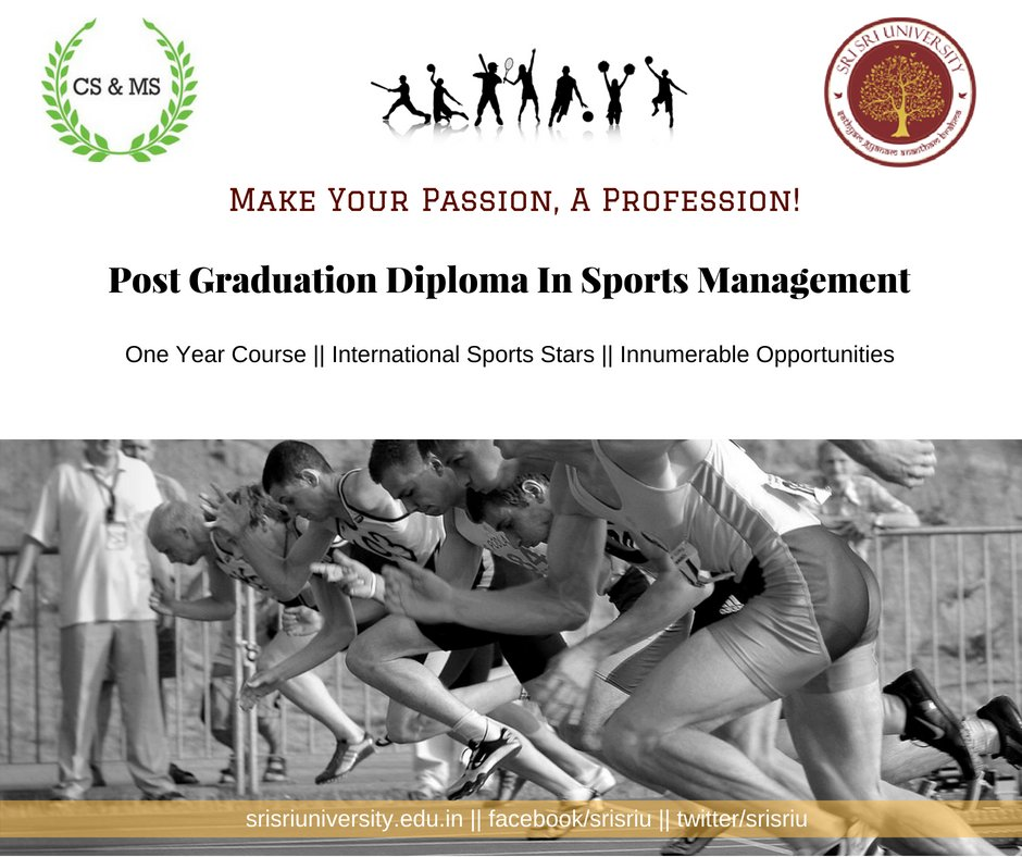 my passion for sports essay Sport is my passion 29k likes this page is dedicated for sport passionates if sport is a major part of your life or you want to start sport.