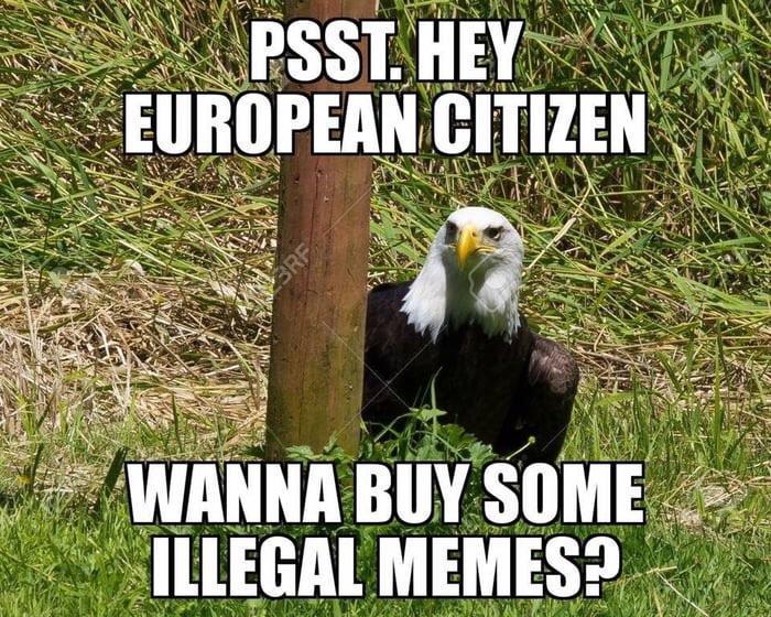 Meme dealer <br>http://pic.twitter.com/FBNjuiMRWR