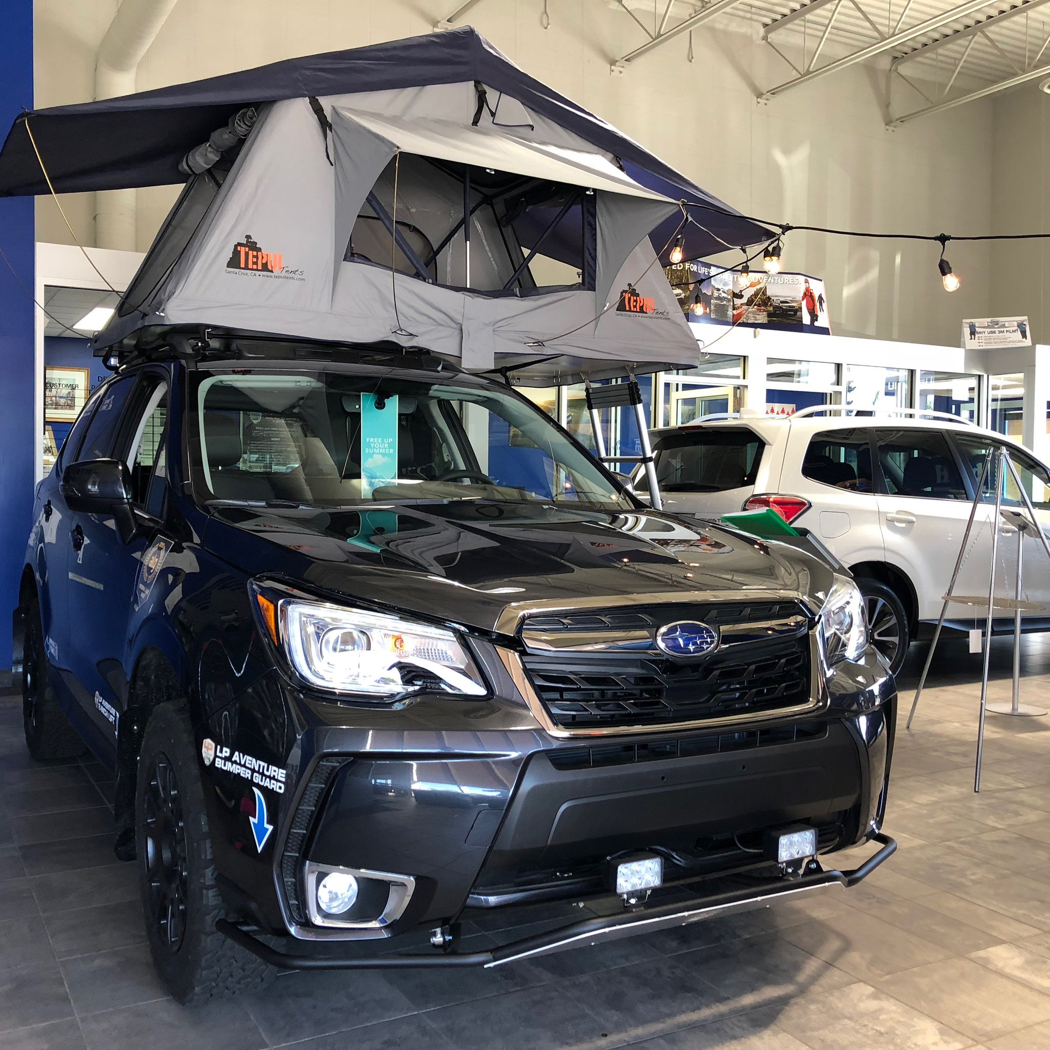 """Subaru Outback Camping >> Scott Subaru в Twitter: """"This lifted Forester XT is ready for the trails, hills, and some star ..."""