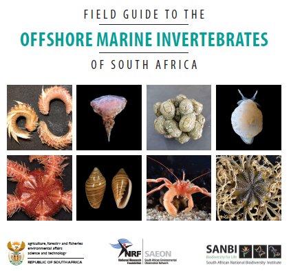 Of invertebrates pdf the biology