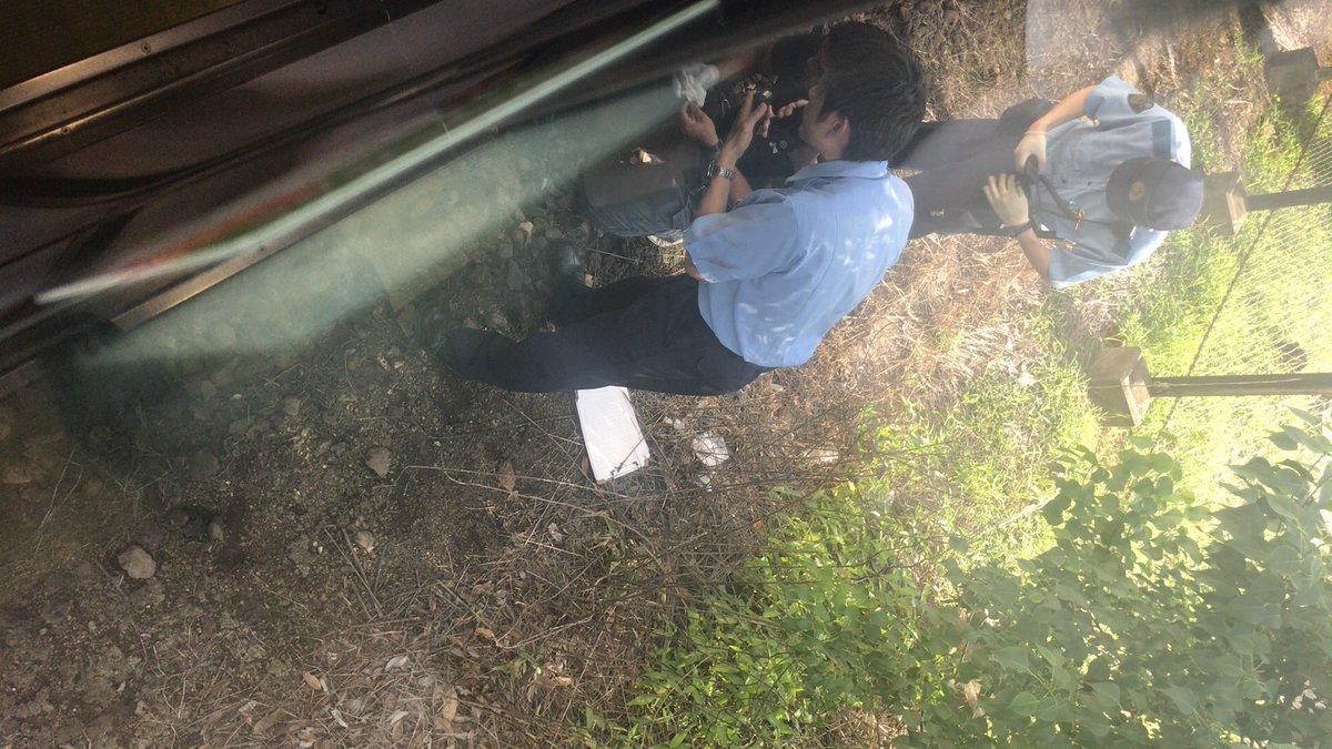 大和路線の大和小泉駅~郡山駅間で人身事故の現場画像