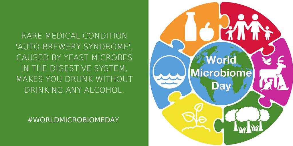 Sfi On Twitter To Mark Worldmicrobiomeday Sfi Staff Are Sharing
