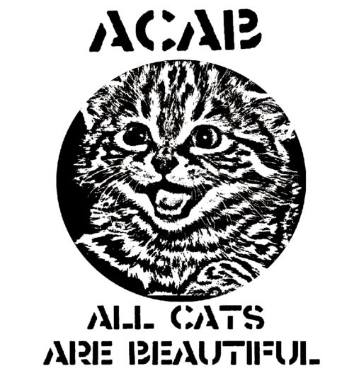 acab meaning