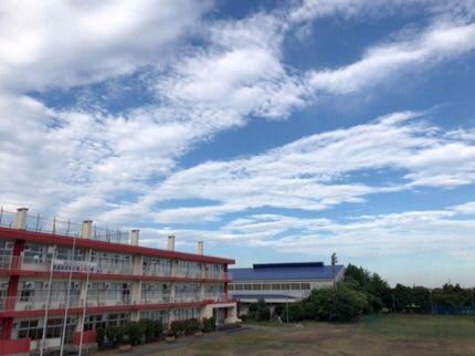 医療 日本 大学 保健 HOME