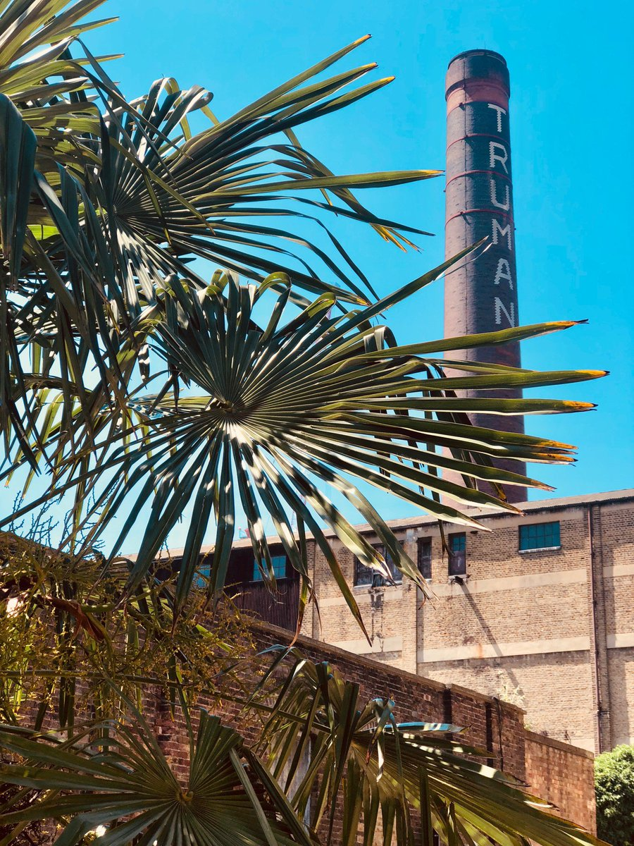 Tropical Brick Lane vibes 🌴🍍 #bricklane #heatwave