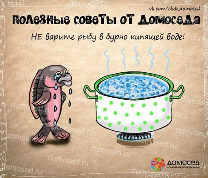 полезные советы гиф картинки рыбы понятие, которое
