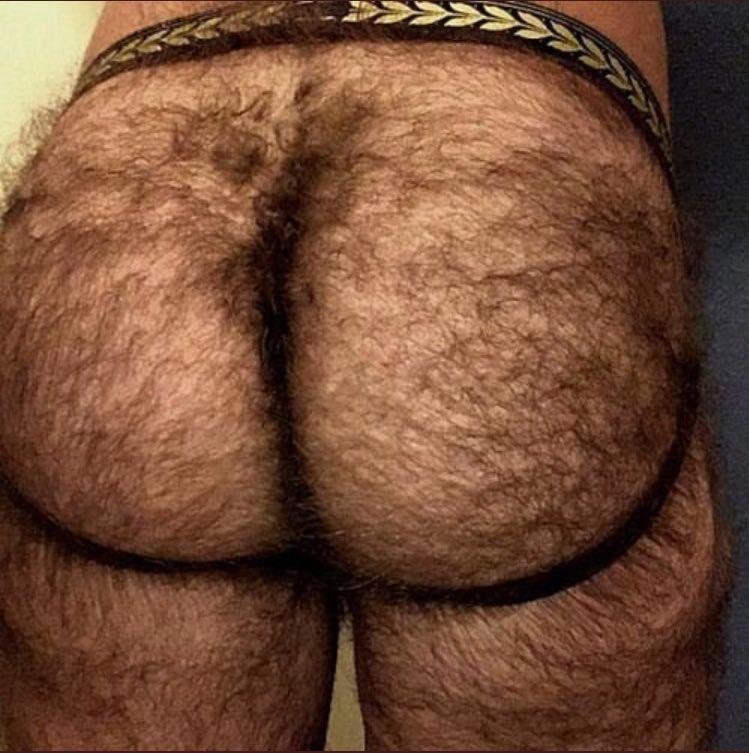 этом случае, фотографии волосатых задниц жоп все понимаешь