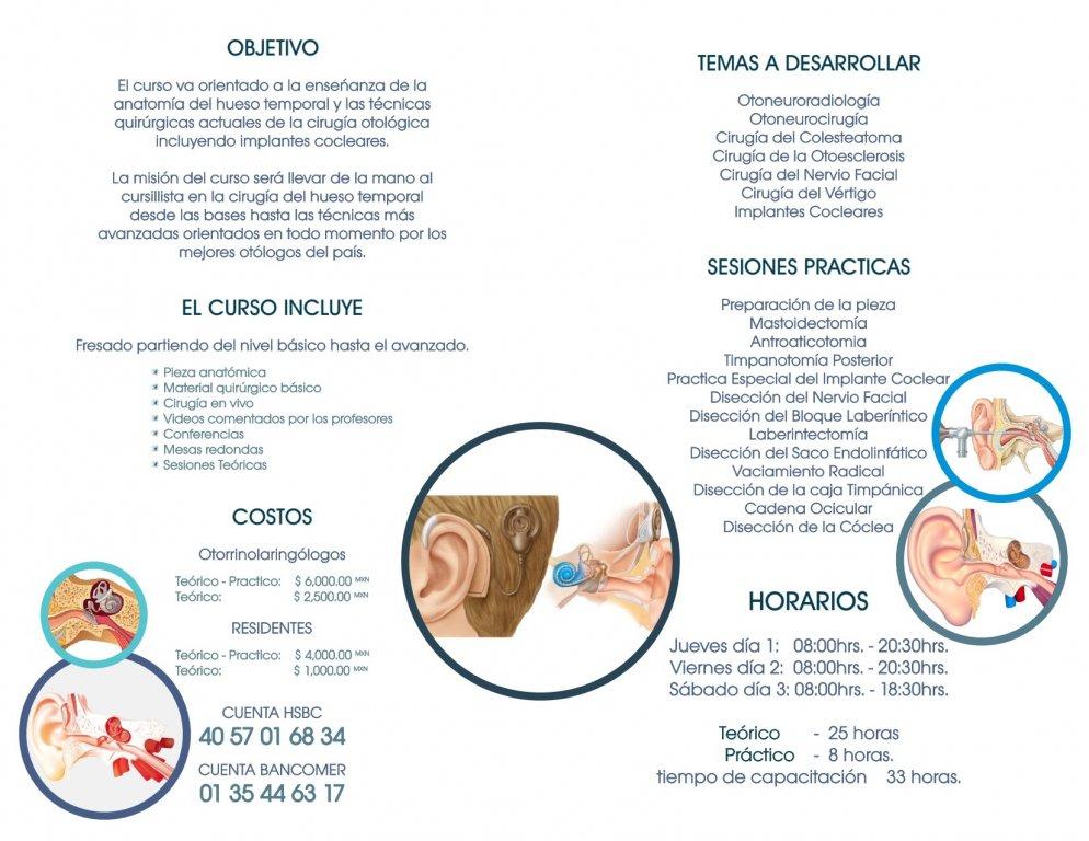 Moderno Conferencias Anatomía Gratuitas Ideas - Anatomía de Las ...