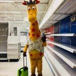 悲しすぎる最後の写真…米国トイザらス経営破綻で全店舗閉店へ