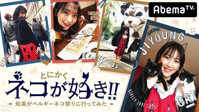 """知英がベルギー「ネコ祭り」で""""ネコづくし""""に!番組ナレーションは高野麻里佳"""