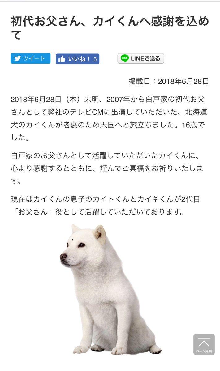 ソフトバンクcm 初代お父さんの犬カイくん死去 16歳 老衰で まとめ
