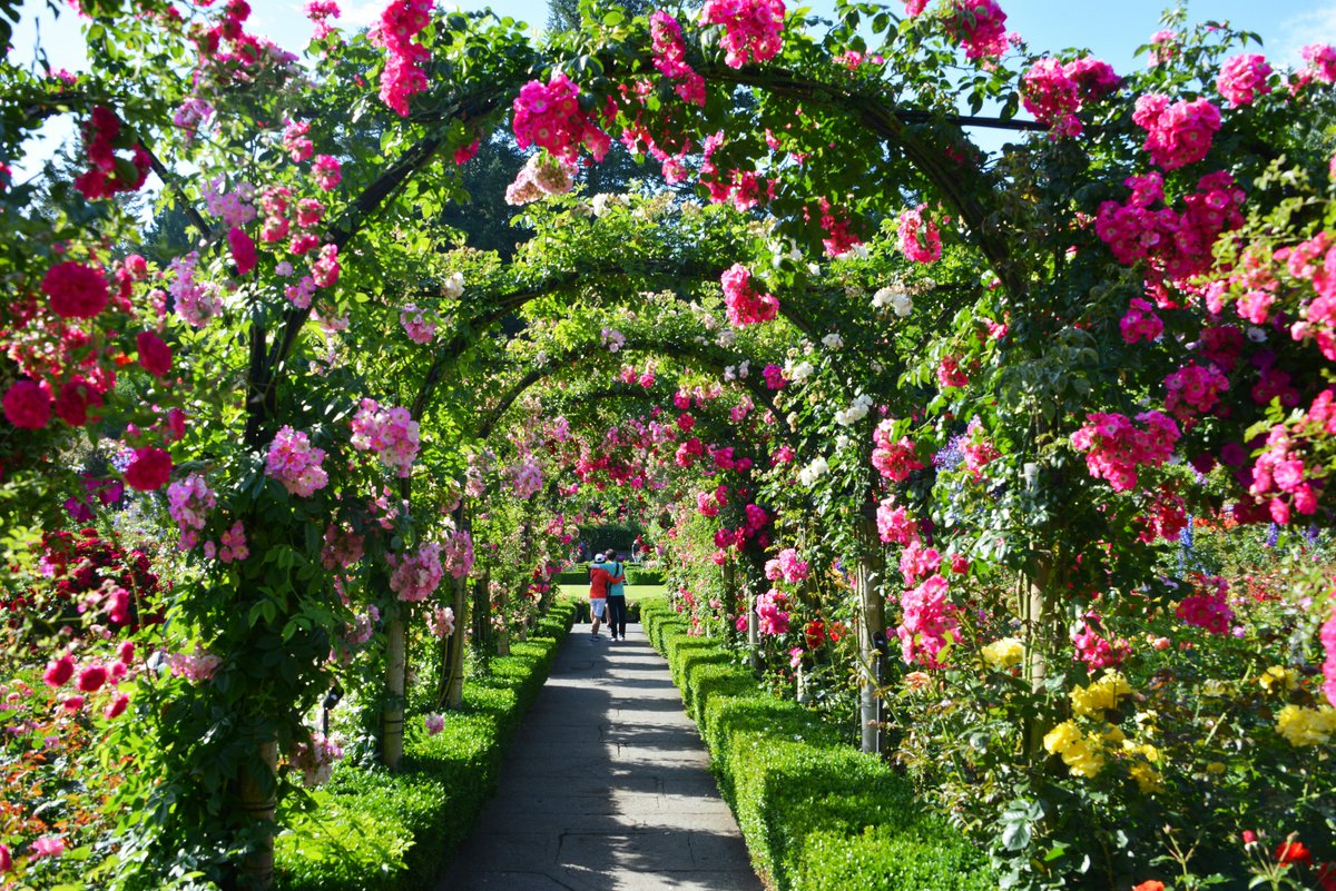 """The Butchart Gardens On Twitter: """"We're Incredibly"""