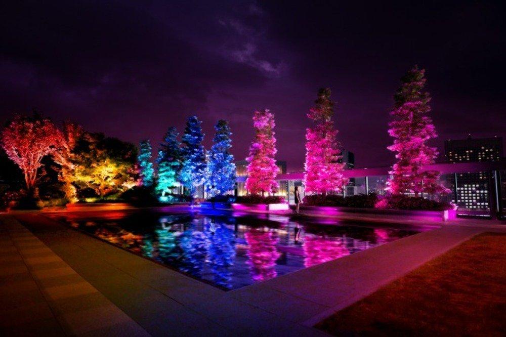 チームラボのデジタルアート「呼応する木々」ギンザ シックス屋上庭園に、光と音が連なる幻想空間 -