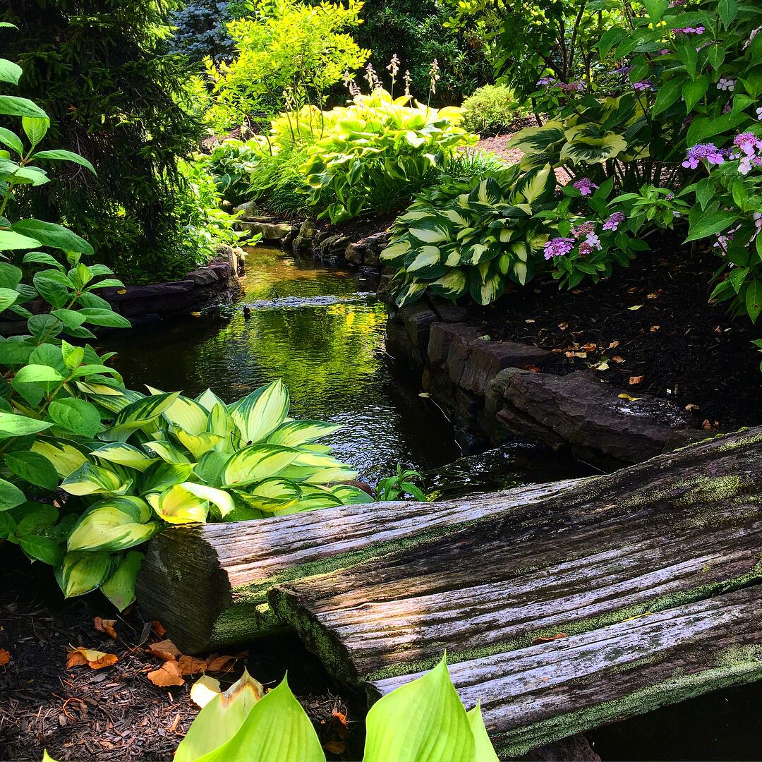 Come See Our Pond Park! An Enjoyable Outing For Any Age! #buckscounty  #pennsylvania #pond #park #gardencenter #gasperhomeandgardenshowplace  #flowers #trees ...