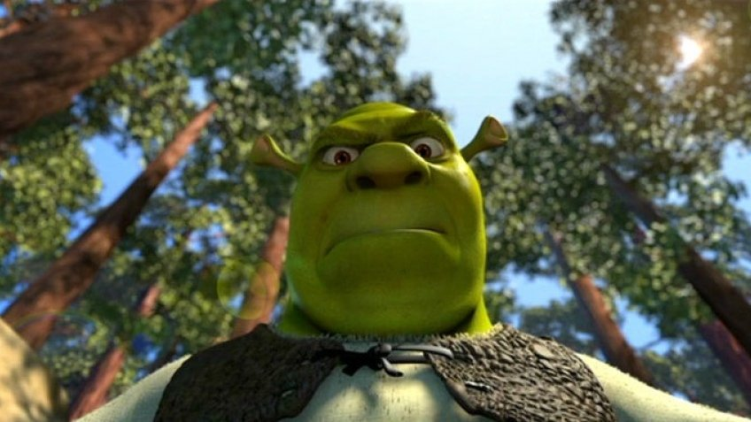essay shrek 1 Shrek explain the looking glass theory and self-concept as they pertain to shrek, donkey, princess fiona, and prince farquar your answer needs to address the components of self.